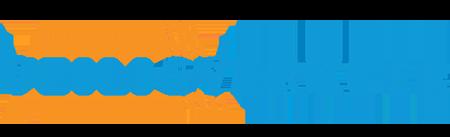 logo veilig verkeer nederland